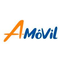 AMovil - Grupo Vio